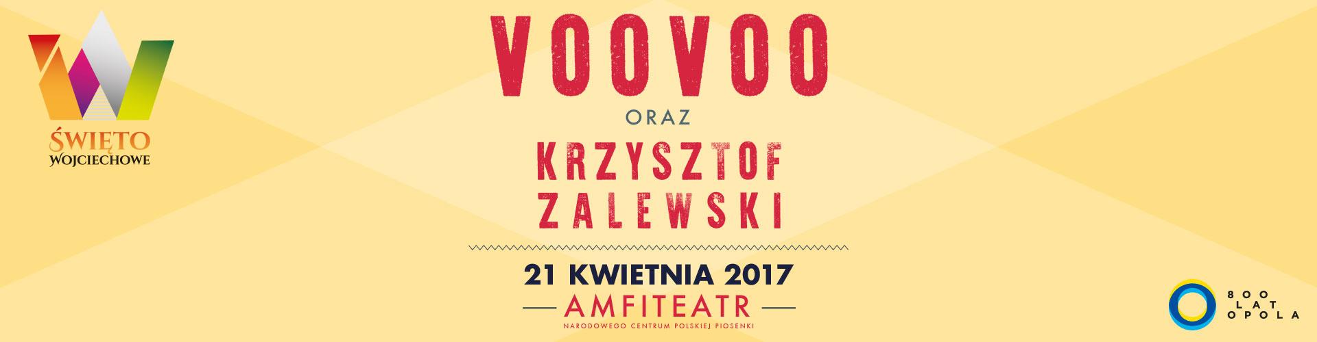 slide_voovoo2017