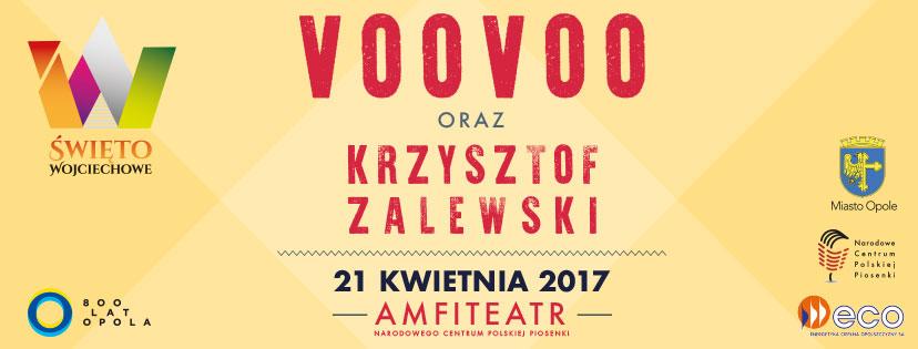 facebook_voovoo2017
