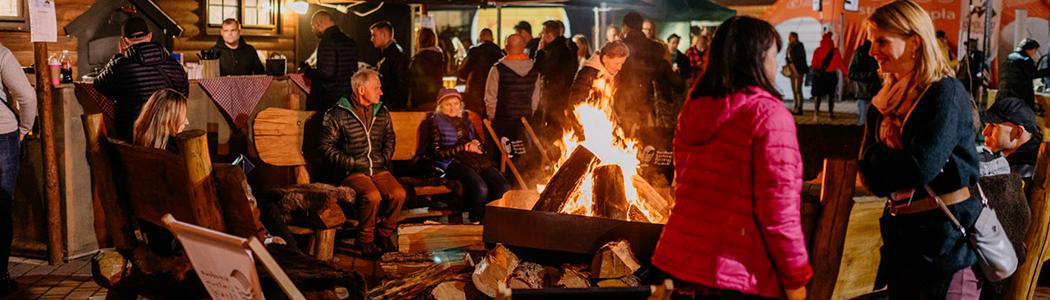 vii-opolski-festiwal-gor