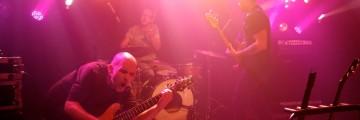 kury-02-10-2011